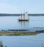 The Bluenose II - photo credit to Trudy Trites